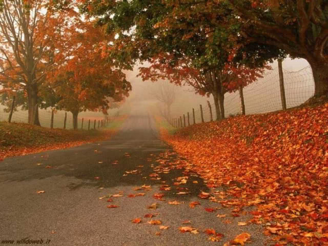 autunno_358