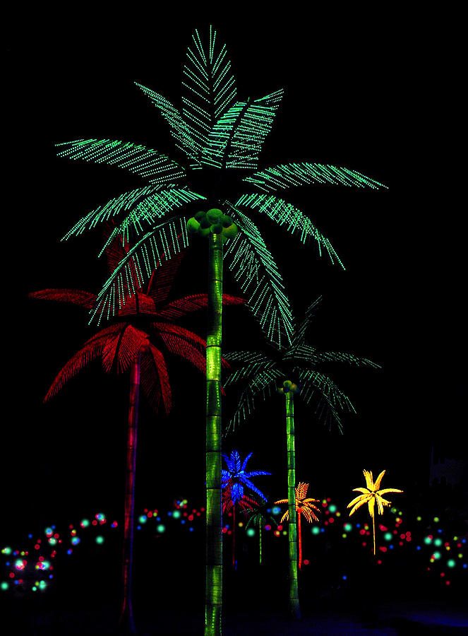 night-lights-electric-palm-trees-karon-melillo-devega