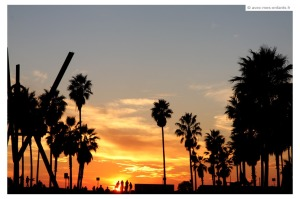 voyage-los-angeles-venice-beach-sunset
